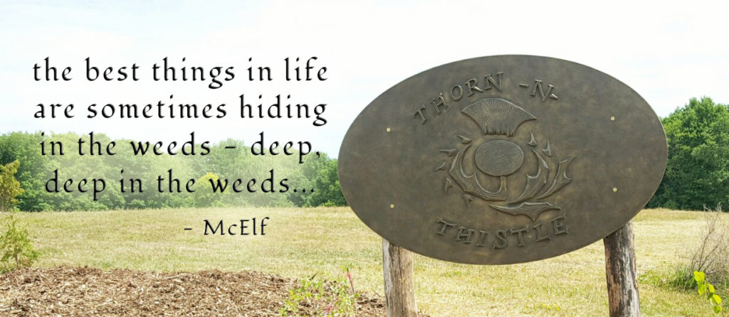 McElfism - the best things in life are sometimes hiding in the weeds - deep, deep in the weeds...